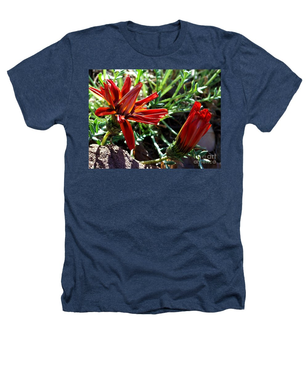 Gazania Heathers T-Shirt featuring the photograph Orange Power by Kathy McClure