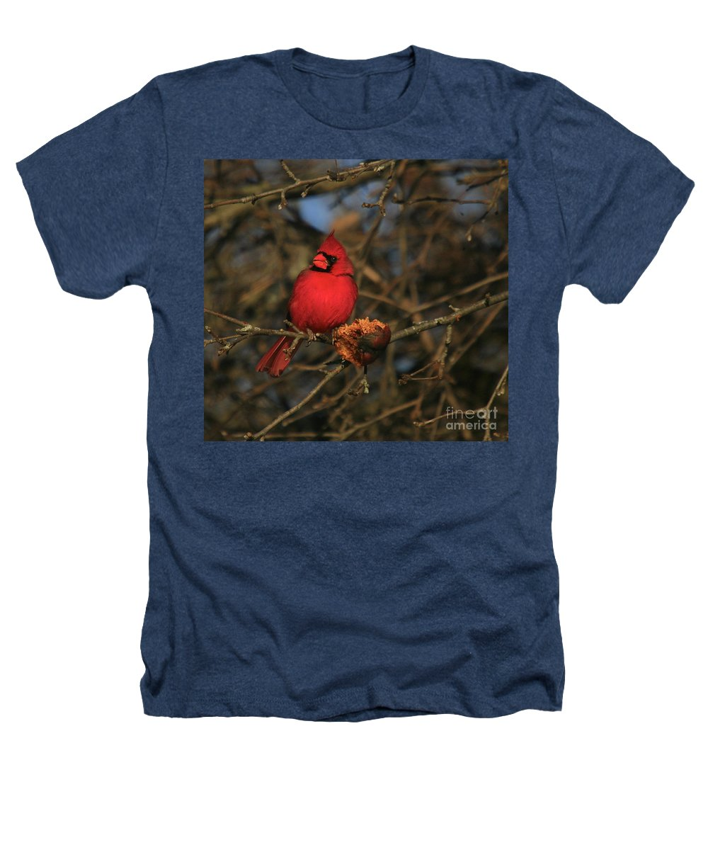 Bird Heathers T-Shirt featuring the photograph Out On A Limb by Robert Pearson