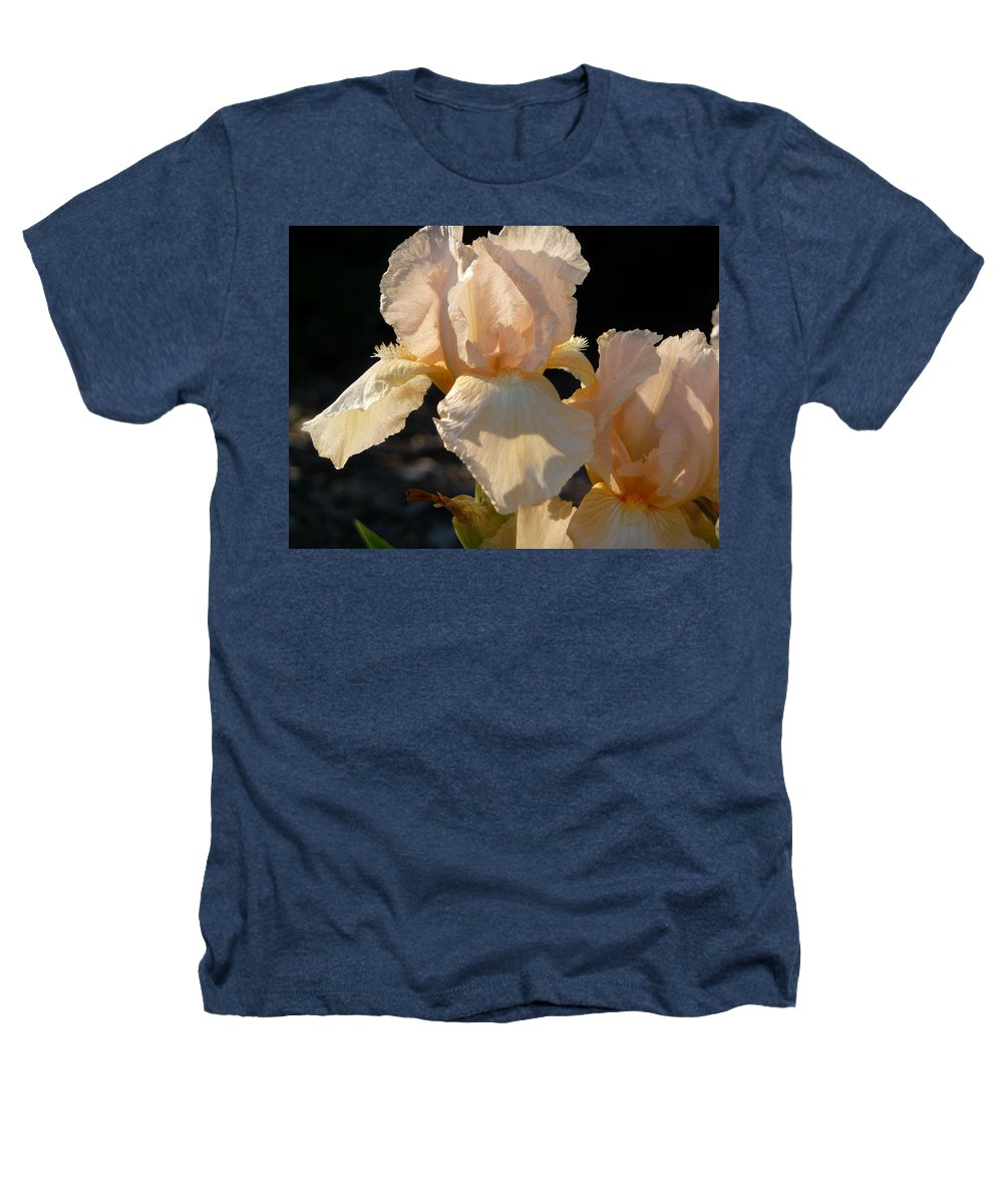 Flower. Iris Heathers T-Shirt featuring the photograph Peach Bearded Iris by Ruth Kamenev