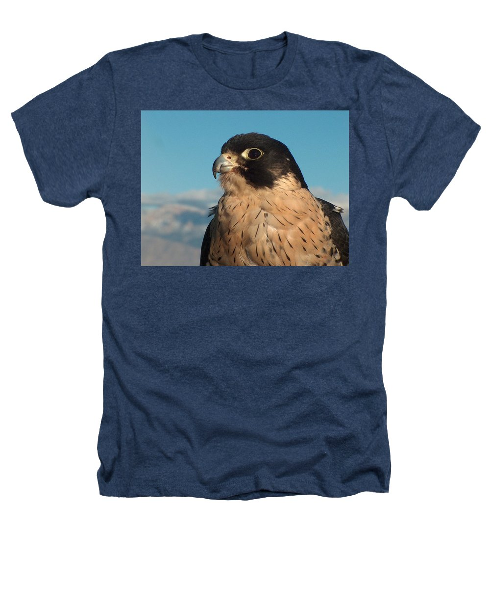 Peregrine Falcon Heathers T-Shirt featuring the photograph Peregrine Falcon by Tim McCarthy