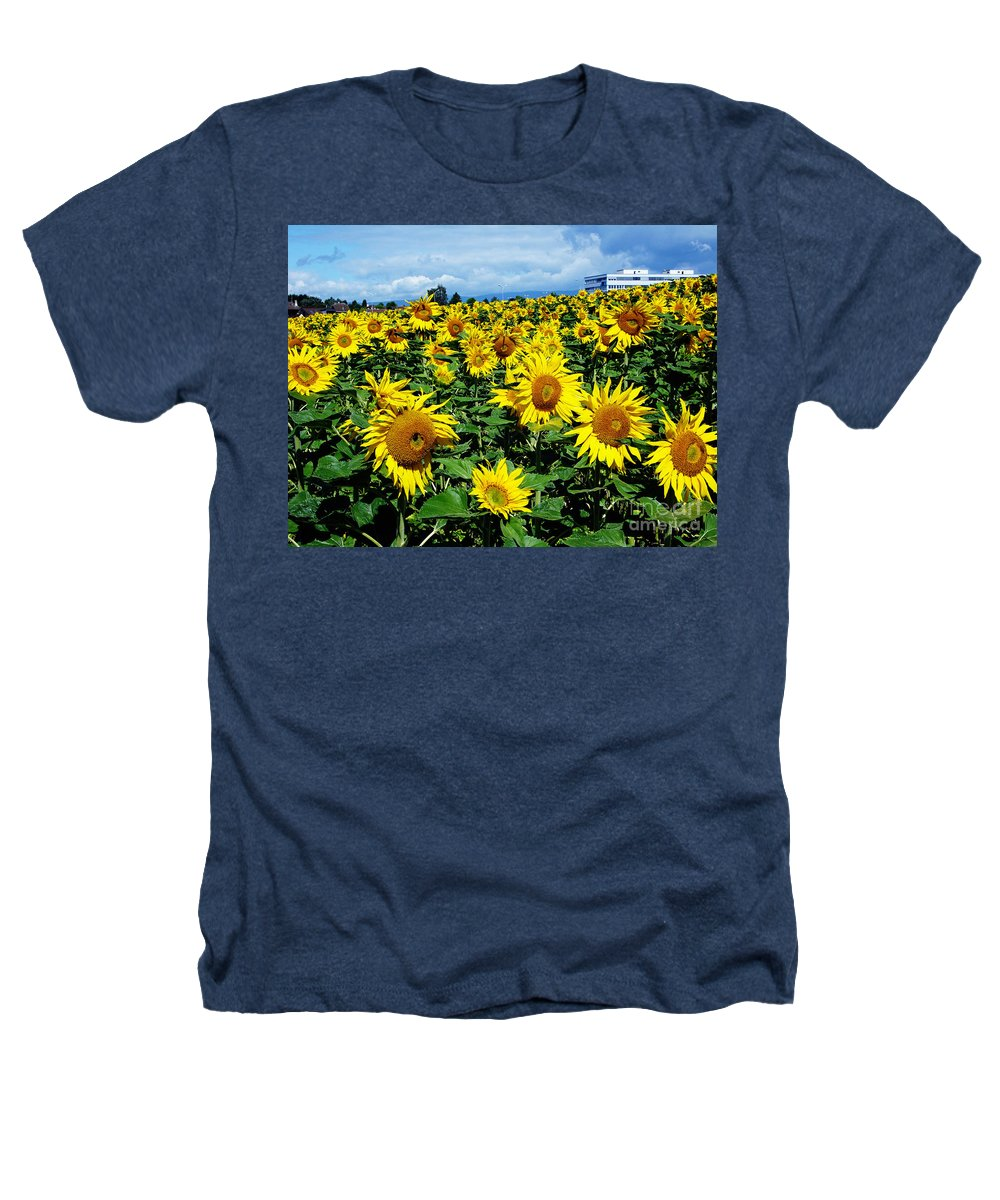 Sunflowers Heathers T-Shirt featuring the photograph Pleasant Warmth by Jeff Barrett