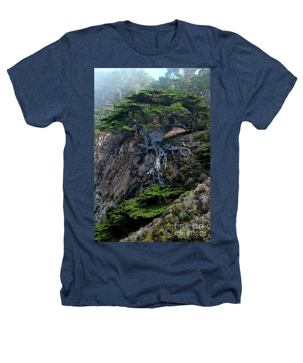Landscape Heathers T-Shirt featuring the photograph Point Lobos Veteran Cypress Tree by Charlene Mitchell