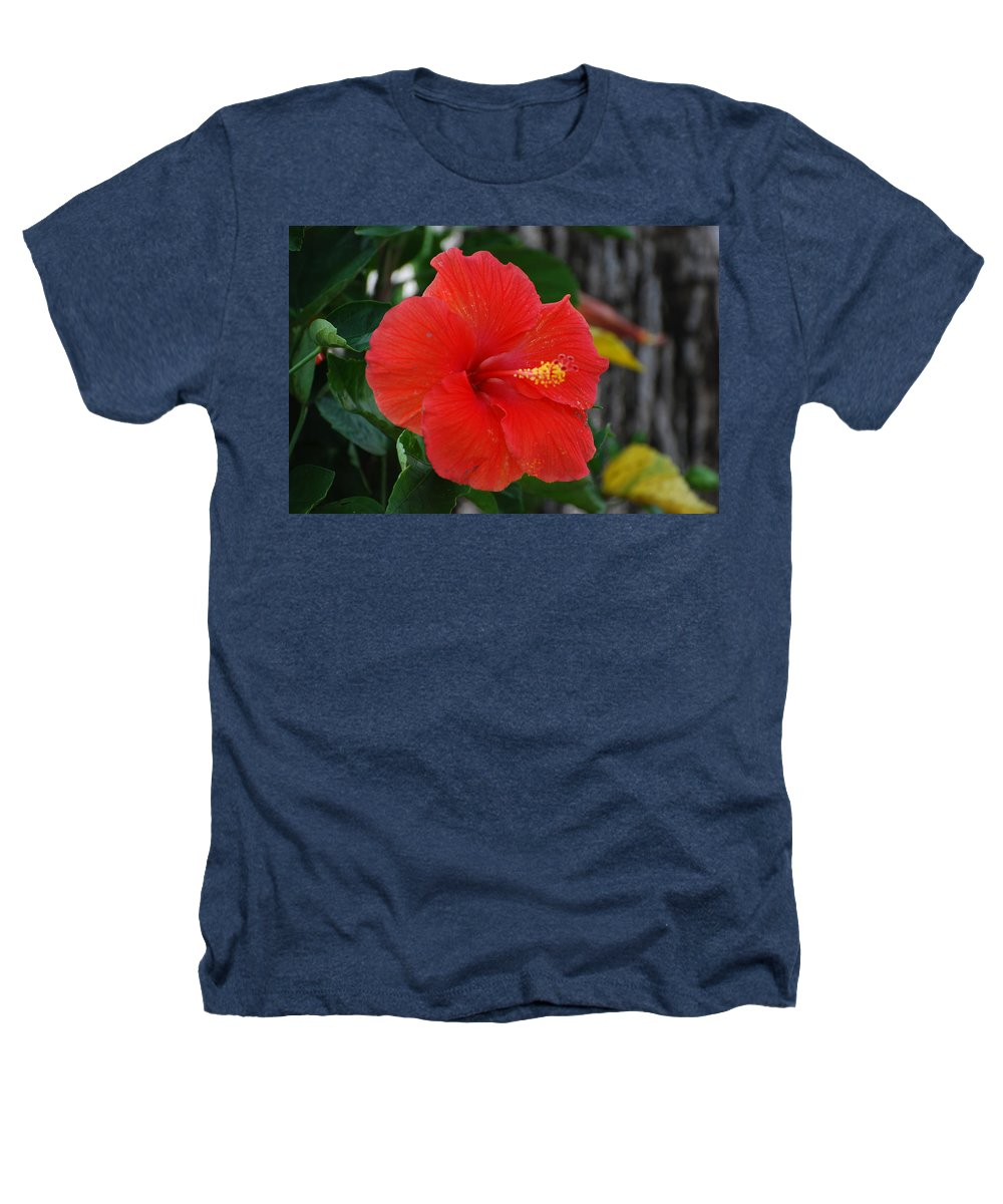 Flowers Heathers T-Shirt featuring the photograph Red Flower by Rob Hans