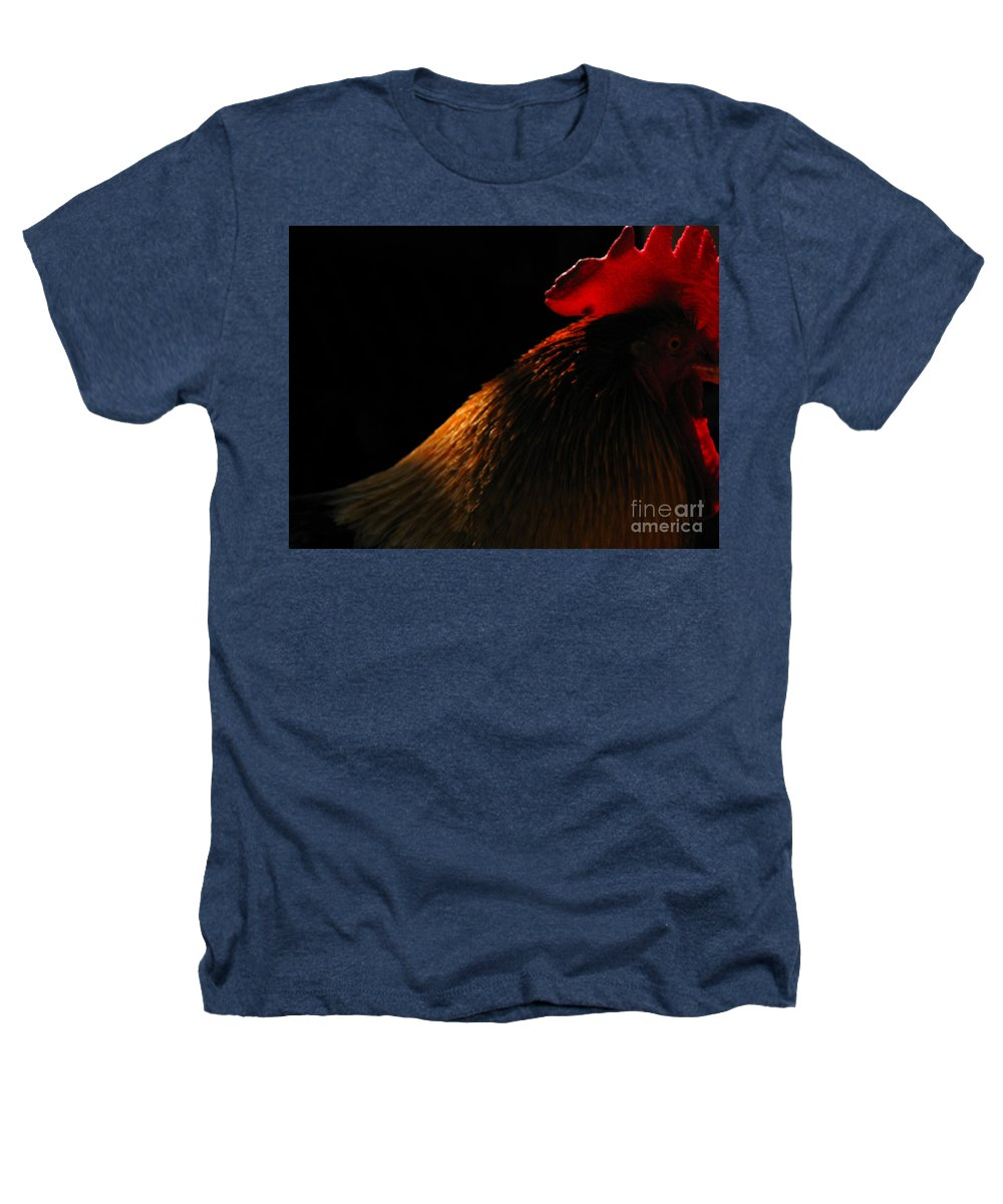 Rooster Heathers T-Shirt featuring the photograph Rooster by Amanda Barcon