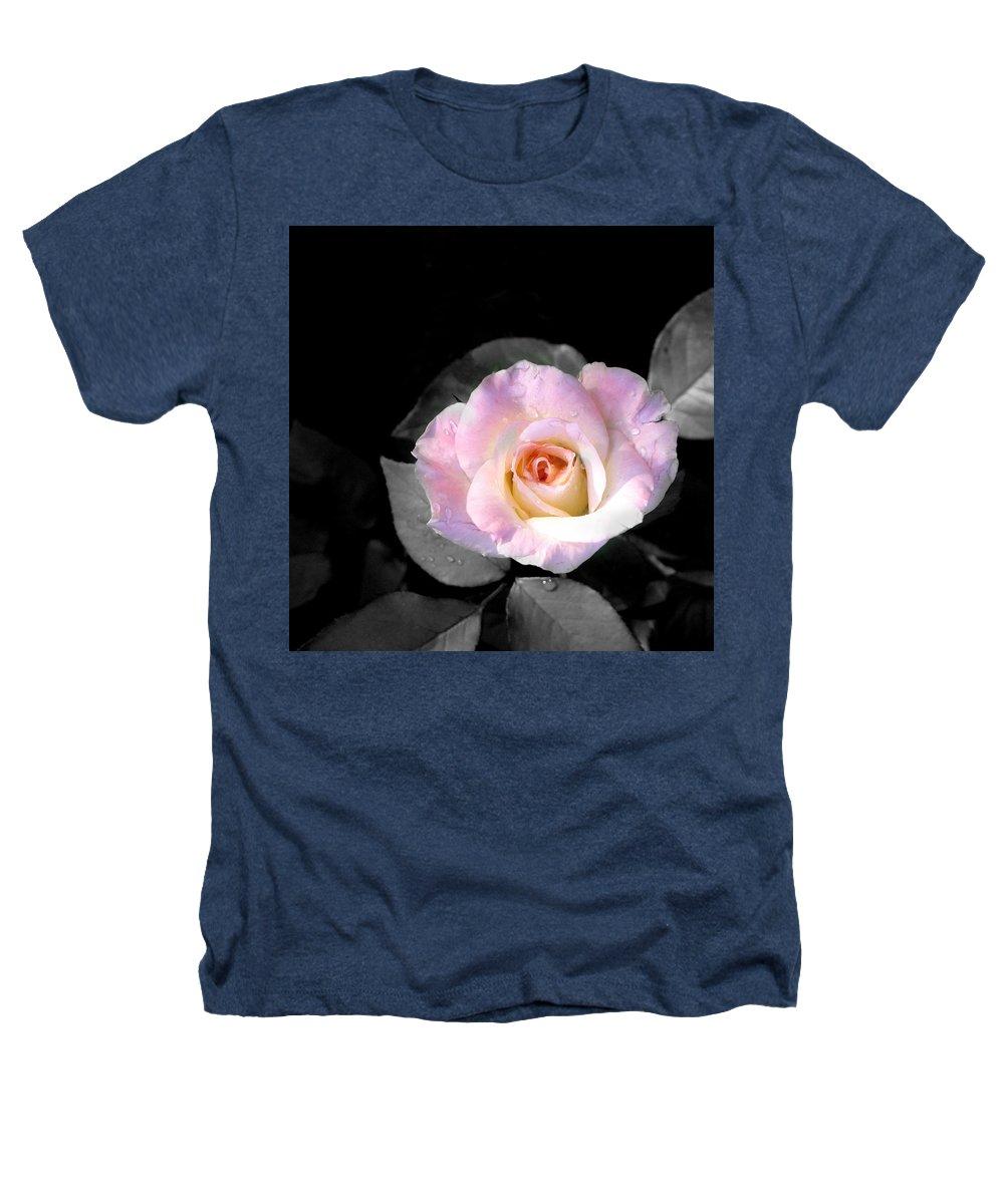 Princess Diana Rose Heathers T-Shirt featuring the photograph Rose Emergance by Steve Karol