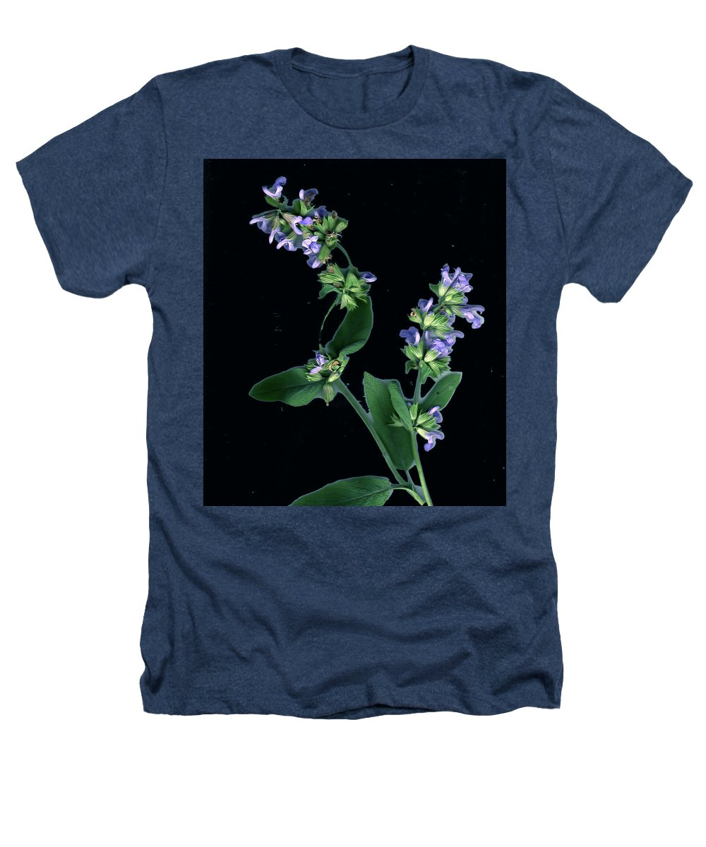 Heathers T-Shirt featuring the photograph Sage Blossom by Wayne Potrafka