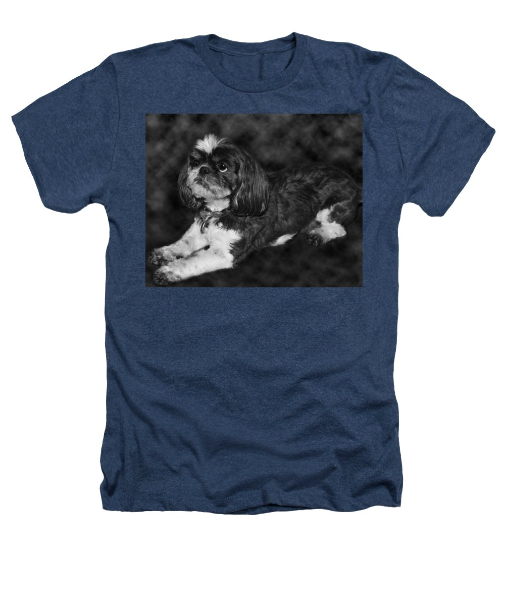 3scape Heathers T-Shirt featuring the painting Shih Tzu by Adam Romanowicz