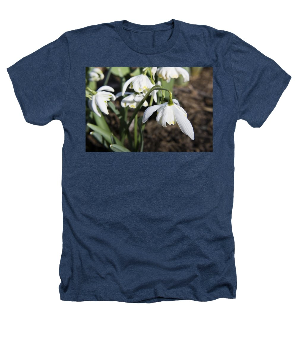 Snowdrops Heathers T-Shirt featuring the photograph Snowdrops by Teresa Mucha