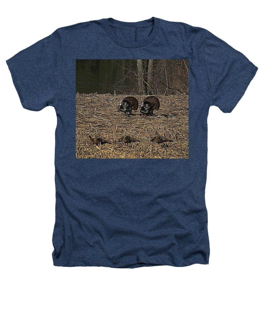 Turkey Heathers T-Shirt featuring the photograph Strutin For The Ladies by Robert Pearson