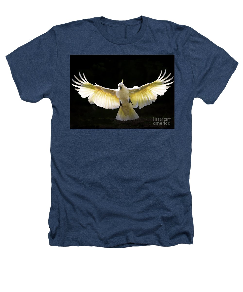 Sulphur Crested Cockatoo Australian Wildlife Heathers T-Shirt featuring the photograph Sulphur Crested Cockatoo In Flight by Sheila Smart Fine Art Photography