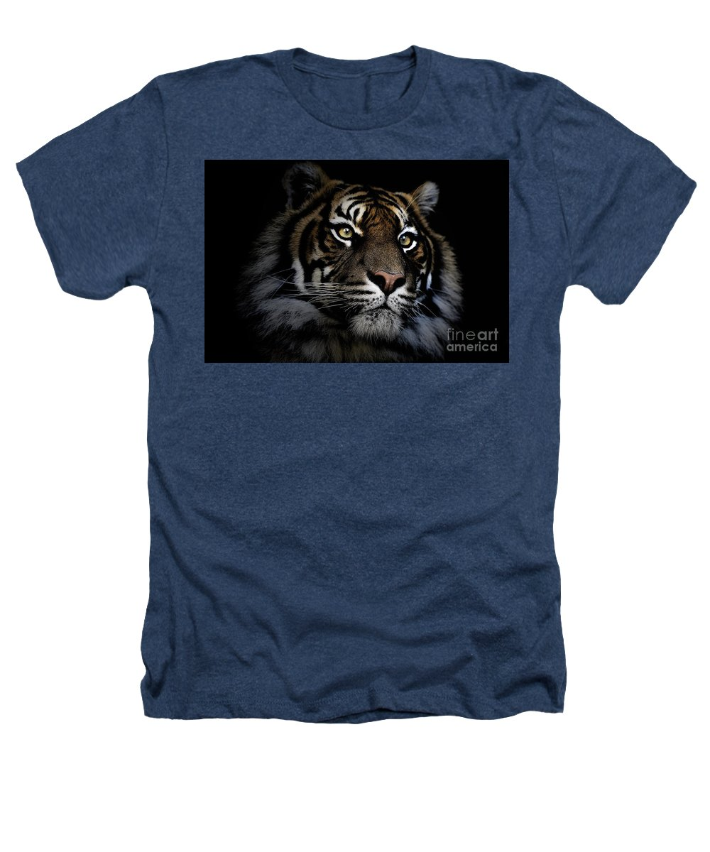 Sumatran Tiger Wildlife Endangered Heathers T-Shirt featuring the photograph Sumatran Tiger by Avalon Fine Art Photography