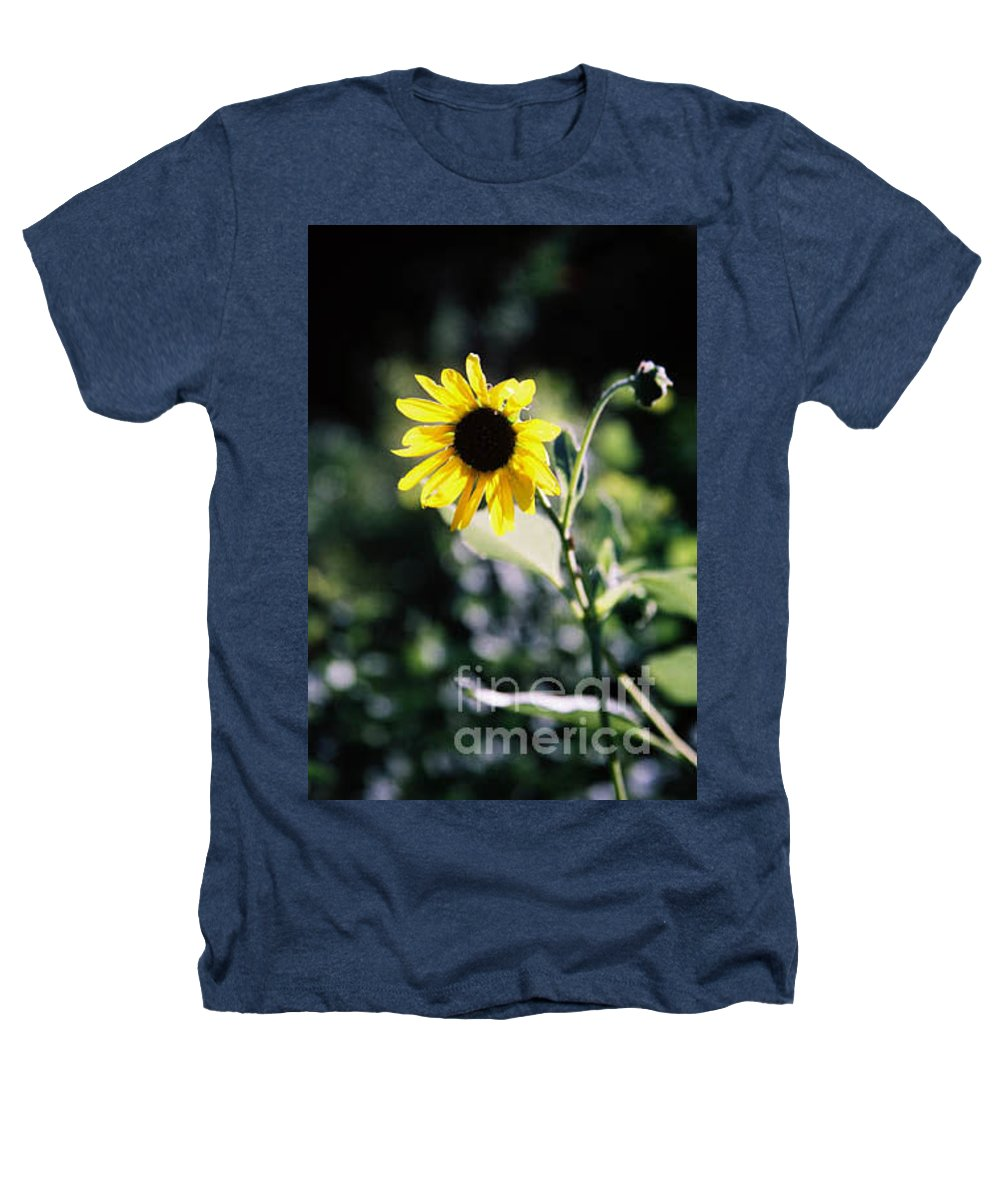 Sunflower Heathers T-Shirt featuring the photograph Summer Sunshine by Kathy McClure
