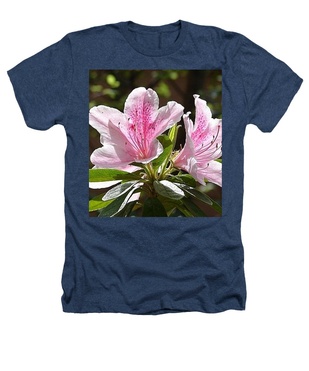 Lily Pinkgreen Pedals Leaves Heathers T-Shirt featuring the photograph Sunshine by Luciana Seymour