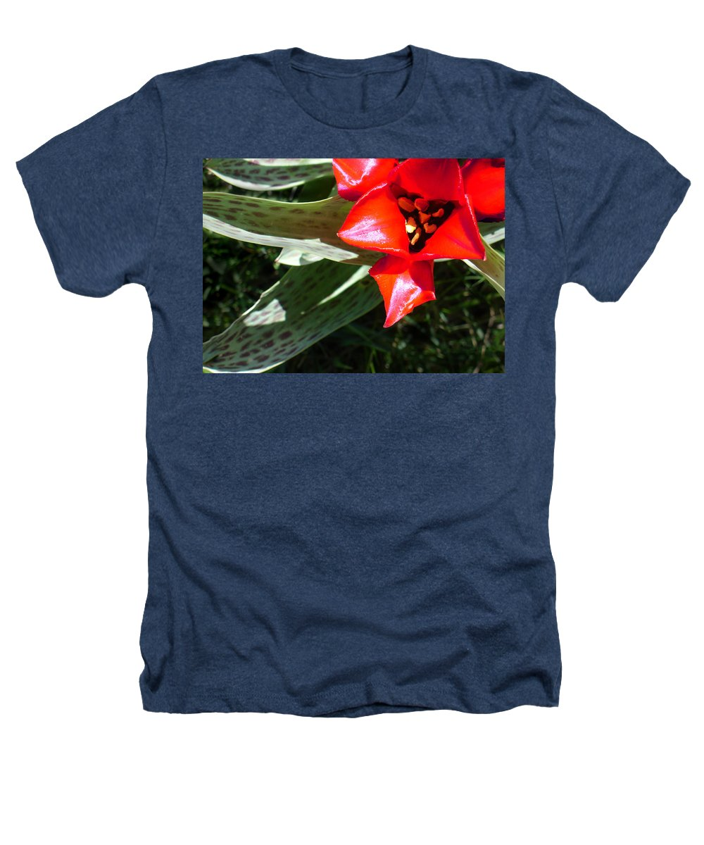 Tulip Heathers T-Shirt featuring the photograph Tulip by Steve Karol