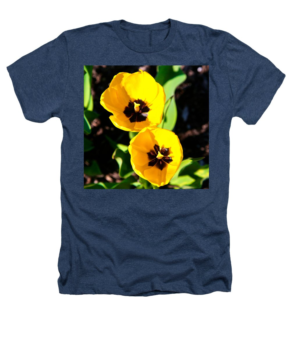 Related Tags: Flowers Artwork Heathers T-Shirt featuring the photograph Two Tulips 2 by Robert Pearson