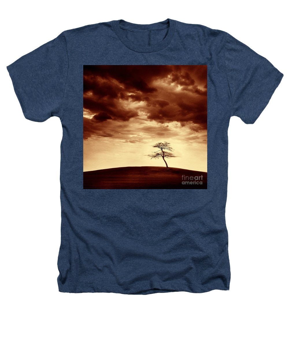 Tree Heathers T-Shirt featuring the photograph What Will Be The Legacy by Dana DiPasquale