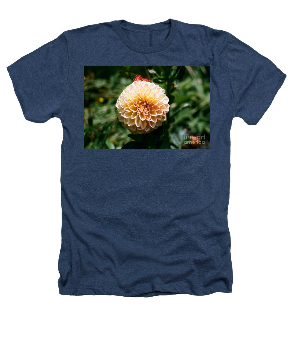 Zinnia Heathers T-Shirt featuring the photograph Zinnia by Dean Triolo