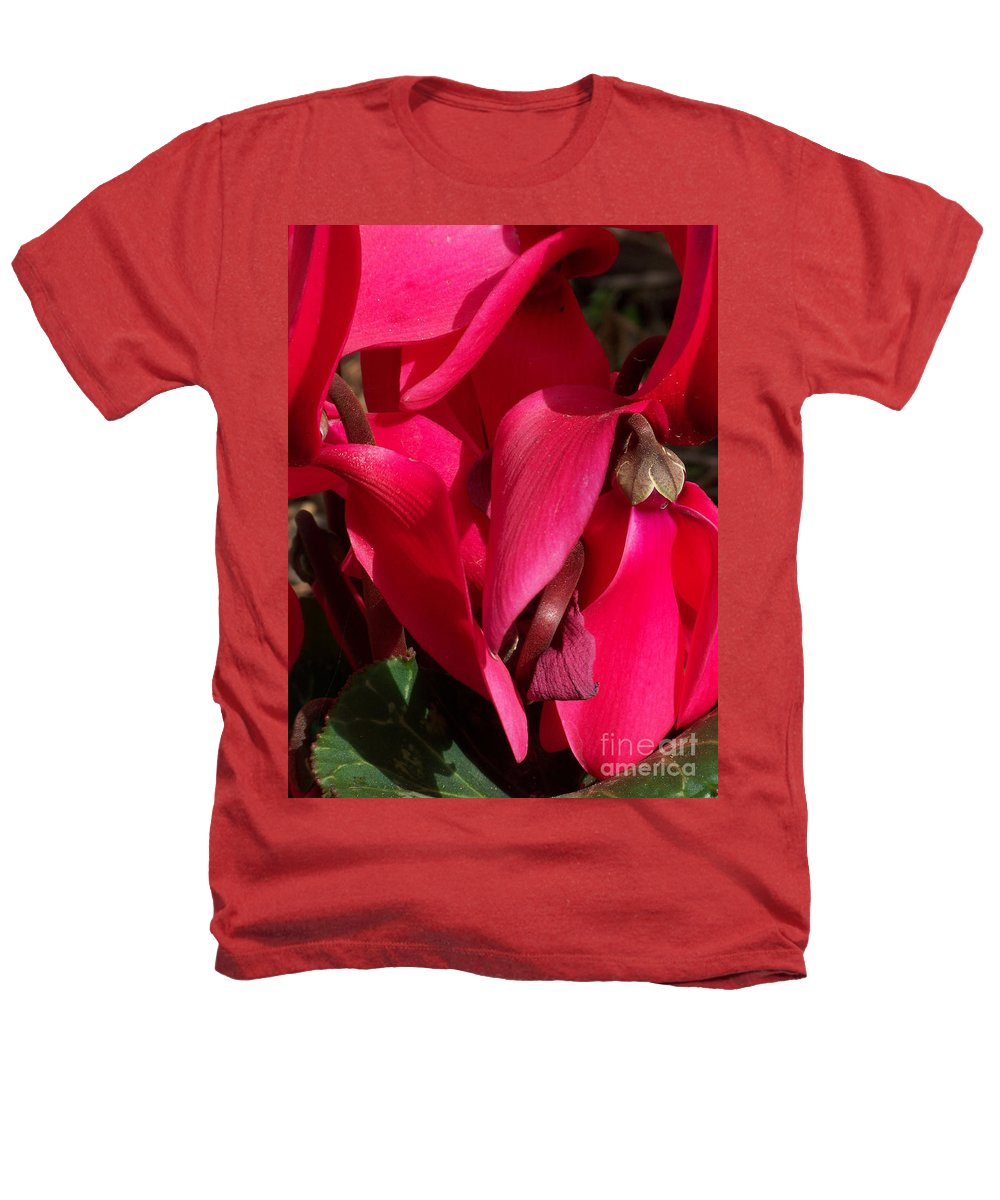 Flowers Heathers T-Shirt featuring the photograph Cyclamen by Kathy McClure