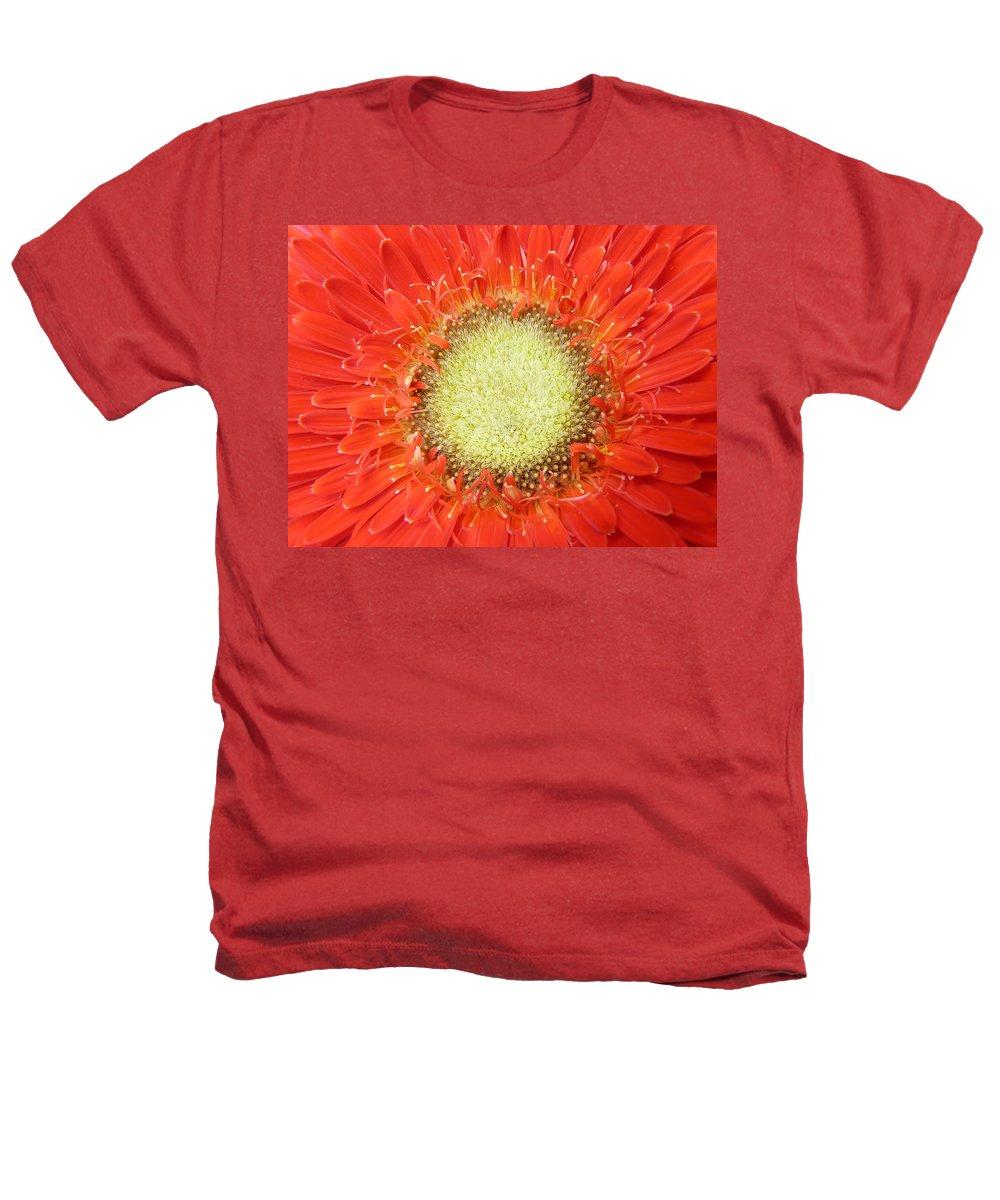 Gerbera Heathers T-Shirt featuring the photograph Gerbera by Daniel Csoka
