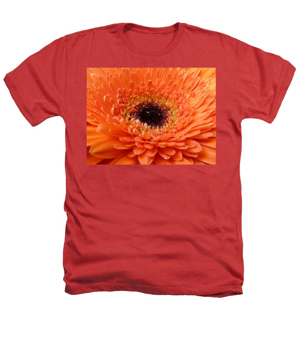 Gerbera Heathers T-Shirt featuring the photograph Gerbera by Daniel Csoka