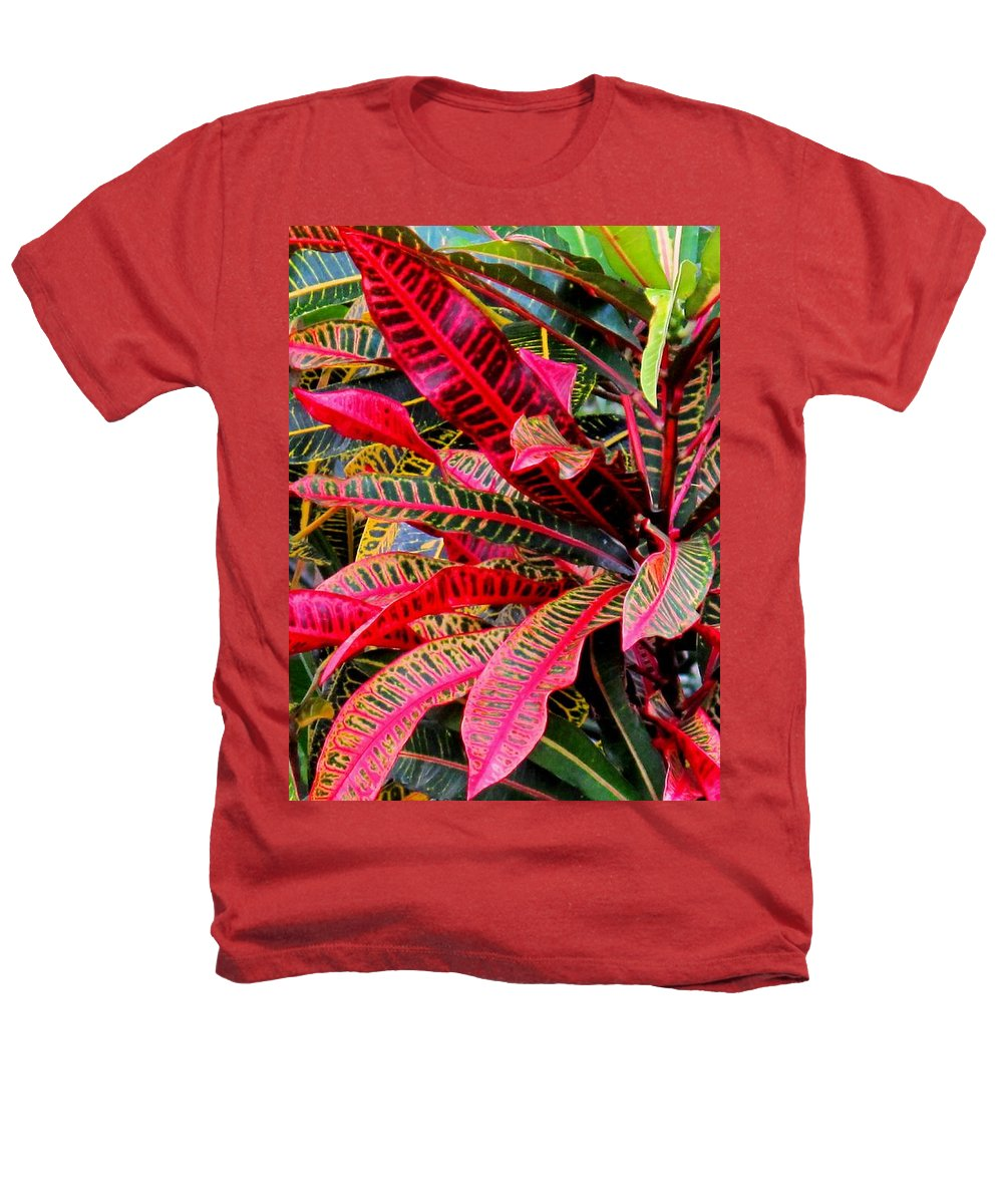 Red Heathers T-Shirt featuring the photograph A Rich Composition by Ian MacDonald