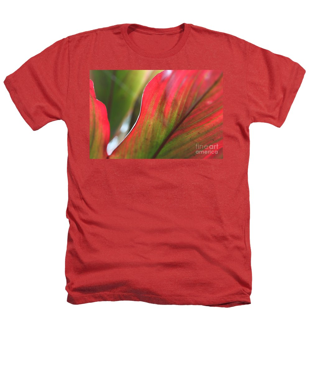 Pink Heathers T-Shirt featuring the photograph Abstract Leaves by Nadine Rippelmeyer