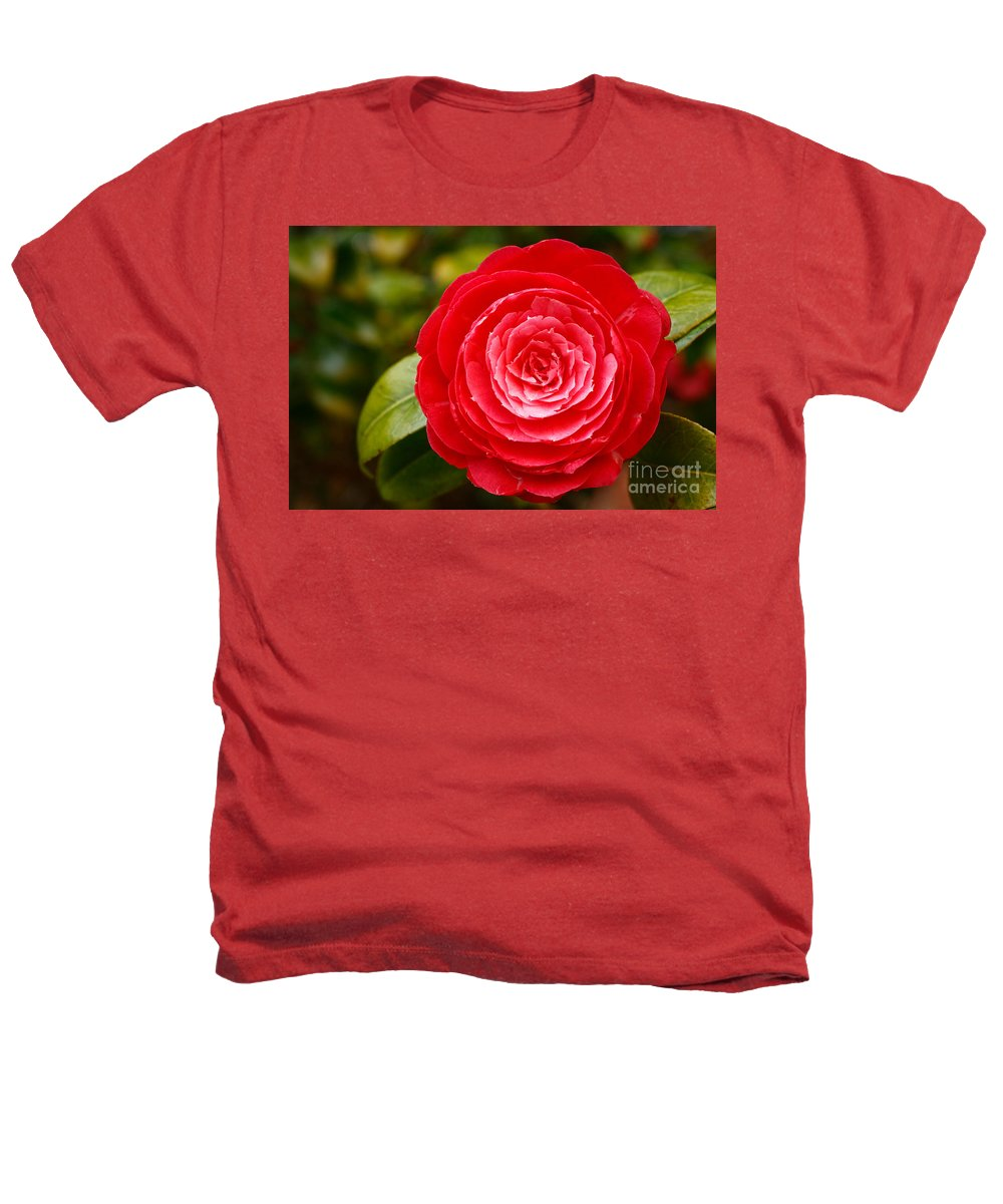 Azores Heathers T-Shirt featuring the photograph Camellia Japonica by Gaspar Avila