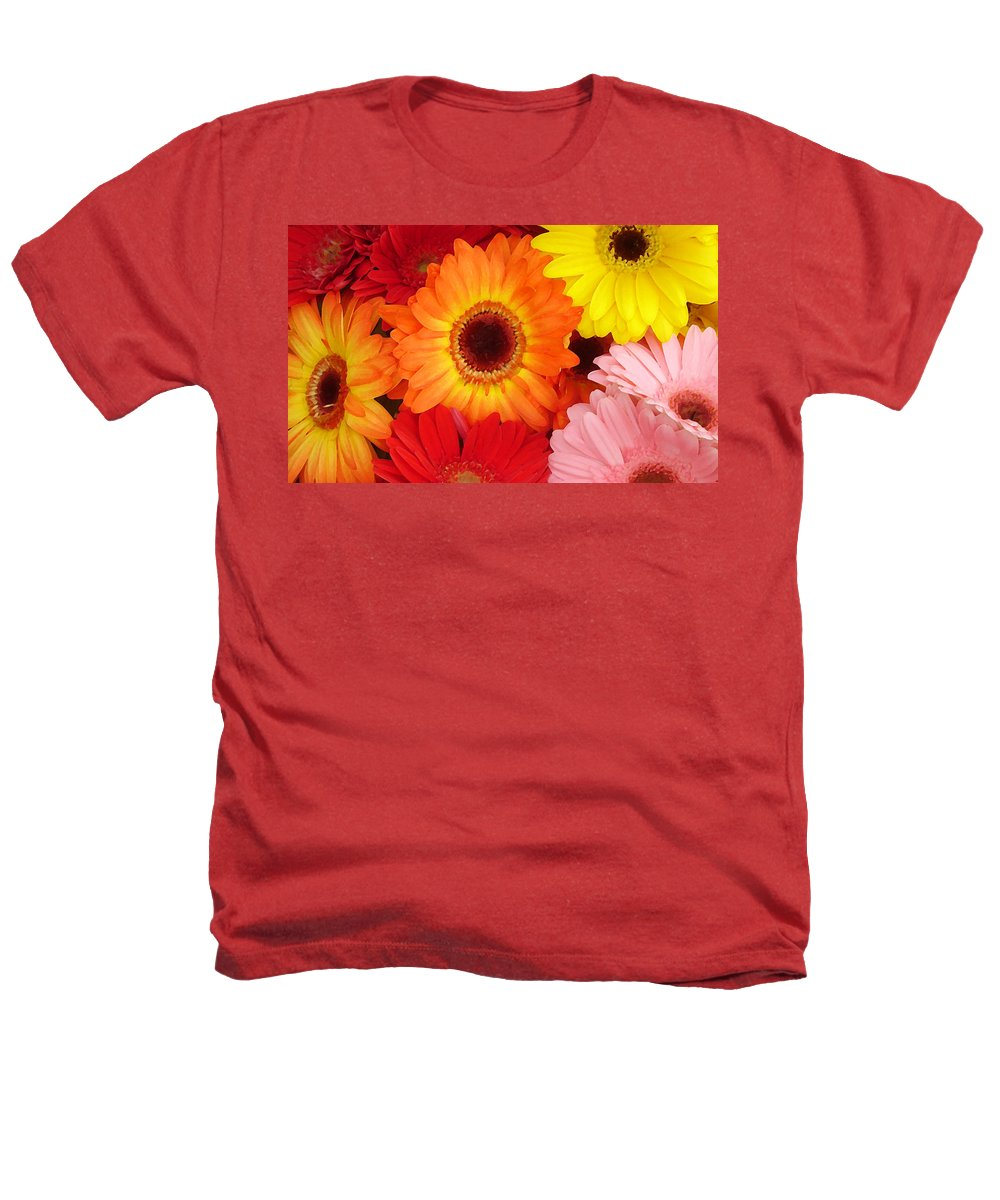 Gerber Daisy Heathers T-Shirt featuring the painting Colorful Gerber Daisies by Amy Vangsgard