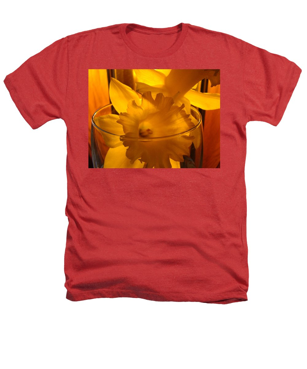 �daffodils Artwork� Heathers T-Shirt featuring the photograph Daffodiil Flowers Evening Glow 9 Contemporary Modern Art Print Giclee by Baslee Troutman