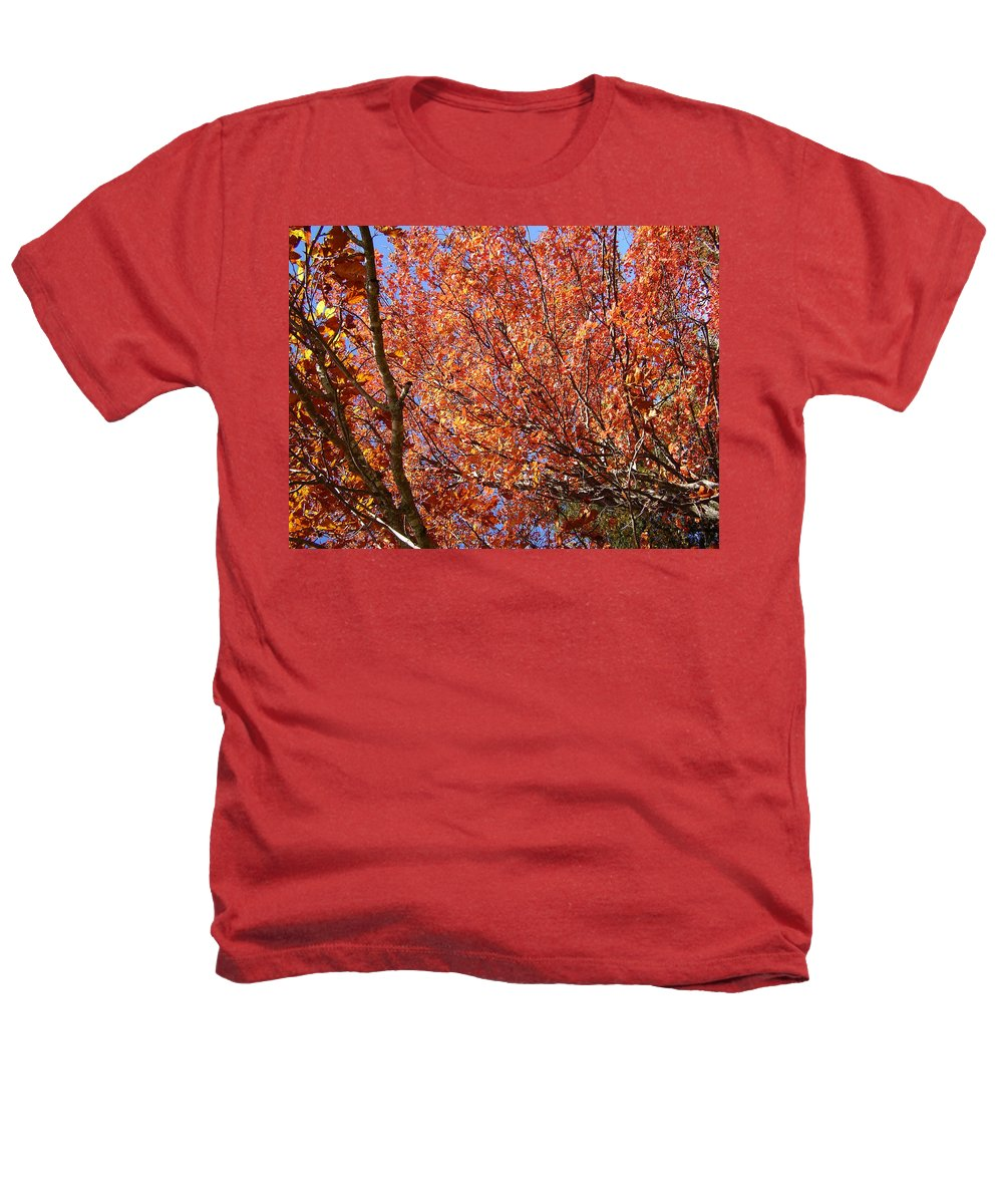 Fall Heathers T-Shirt featuring the photograph Fall In The Blue Ridge Mountains by Flavia Westerwelle