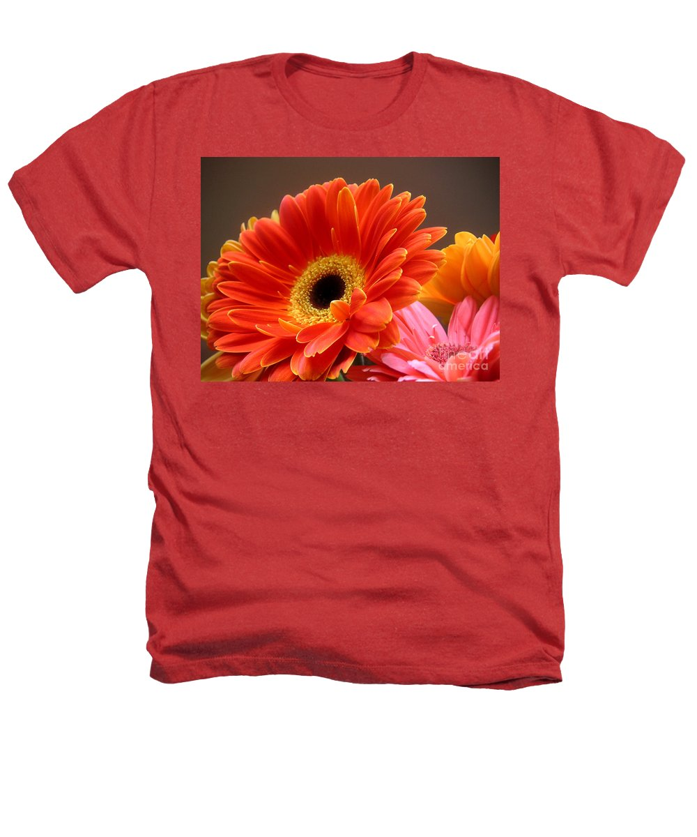 Nature Heathers T-Shirt featuring the photograph Gerbera Daisies - Luminous by Lucyna A M Green