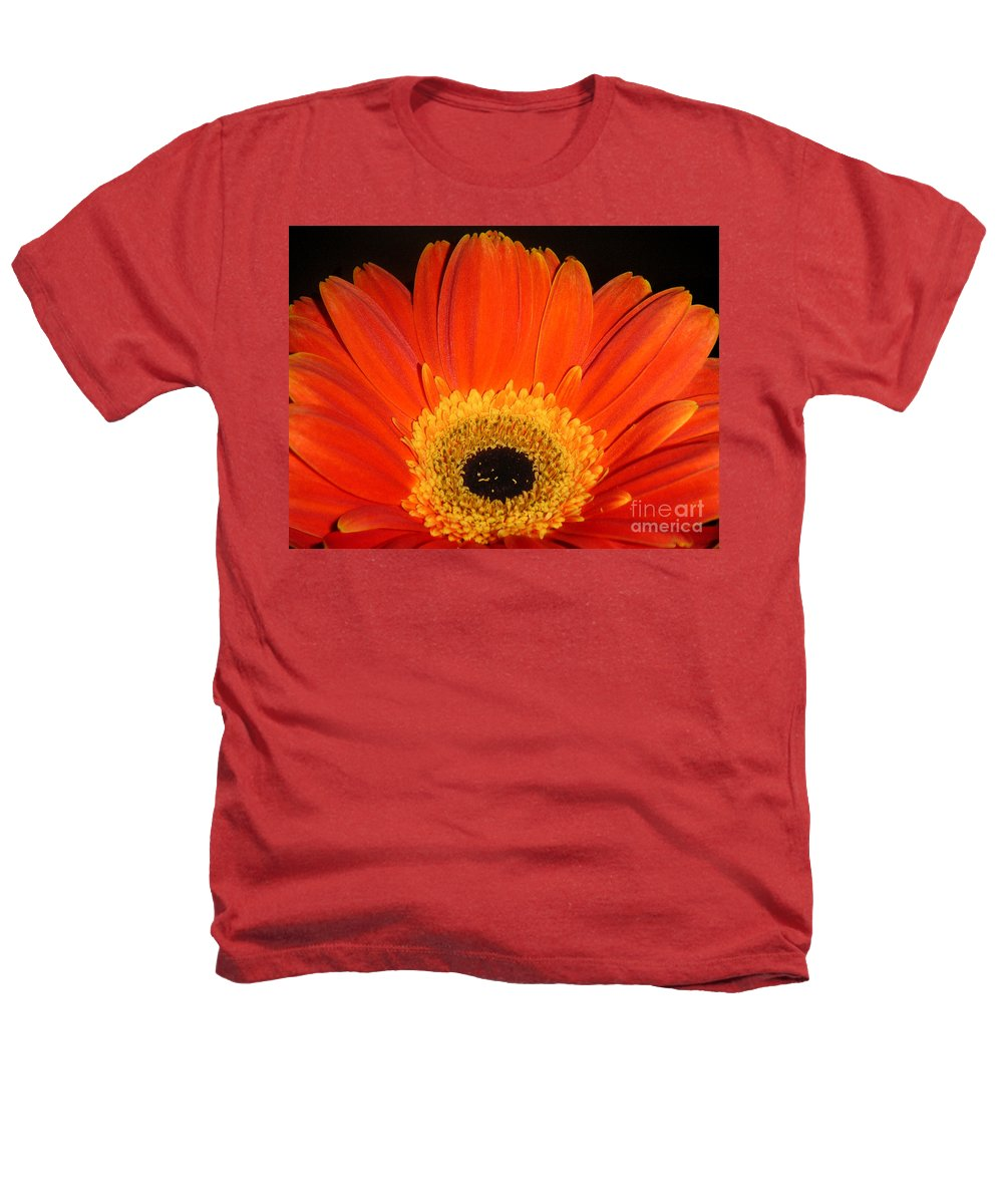 Nature Heathers T-Shirt featuring the photograph Gerbera Daisy - Glowing In The Dark by Lucyna A M Green