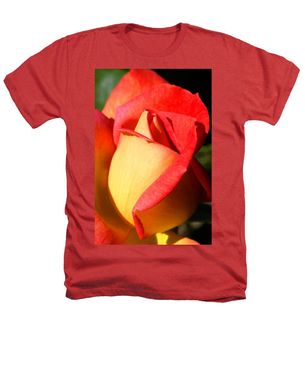 Orange Rosebud Heathers T-Shirt featuring the photograph Orange Rosebud by Ralph A Ledergerber-Photography
