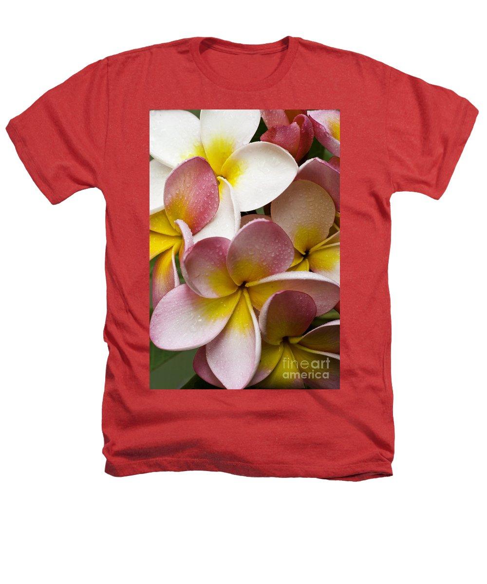 Pink Frangipani Heathers T-Shirt featuring the photograph Pink Frangipani by Sheila Smart Fine Art Photography