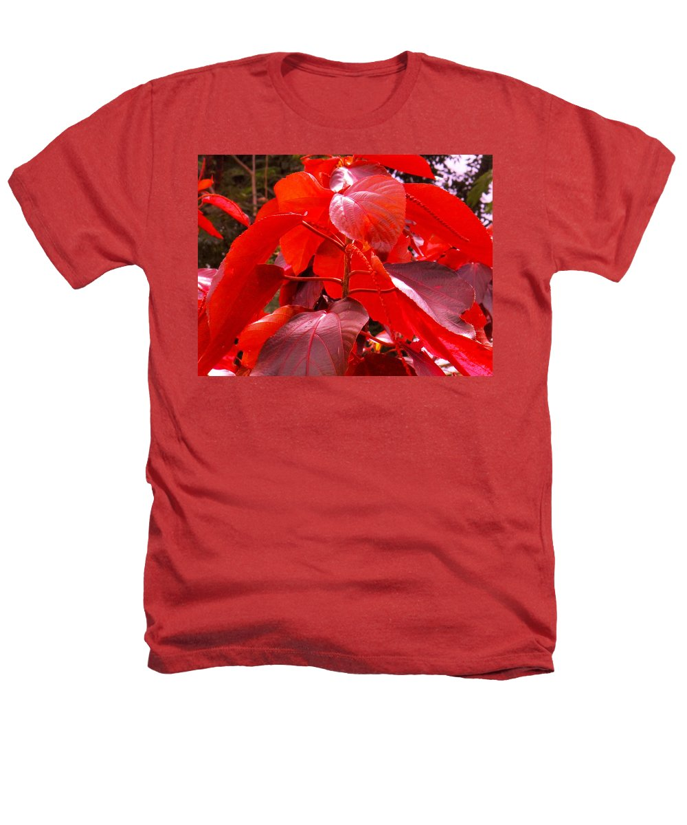 Red Heathers T-Shirt featuring the photograph Red by Ian MacDonald