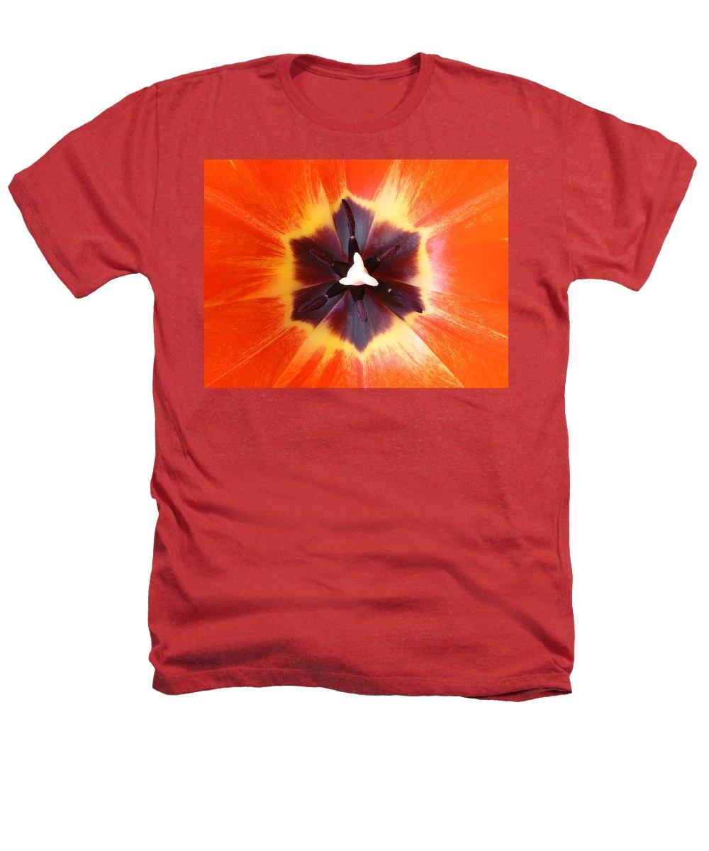 Tulip Heathers T-Shirt featuring the photograph Tulip by Daniel Csoka