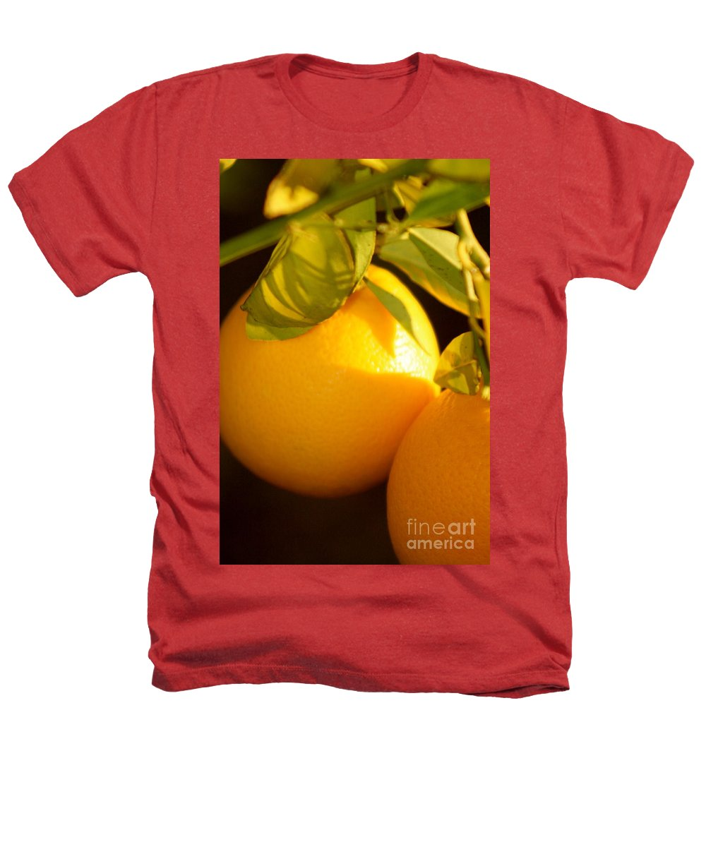 Fruit Heathers T-Shirt featuring the photograph Winter Fruit by Nadine Rippelmeyer