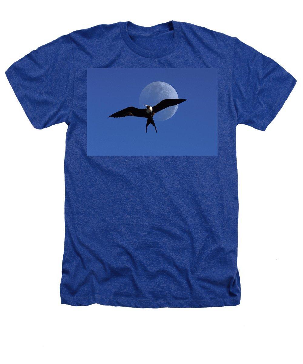 Frigate Heathers T-Shirt featuring the photograph Frigatebird Moon by Jerry McElroy