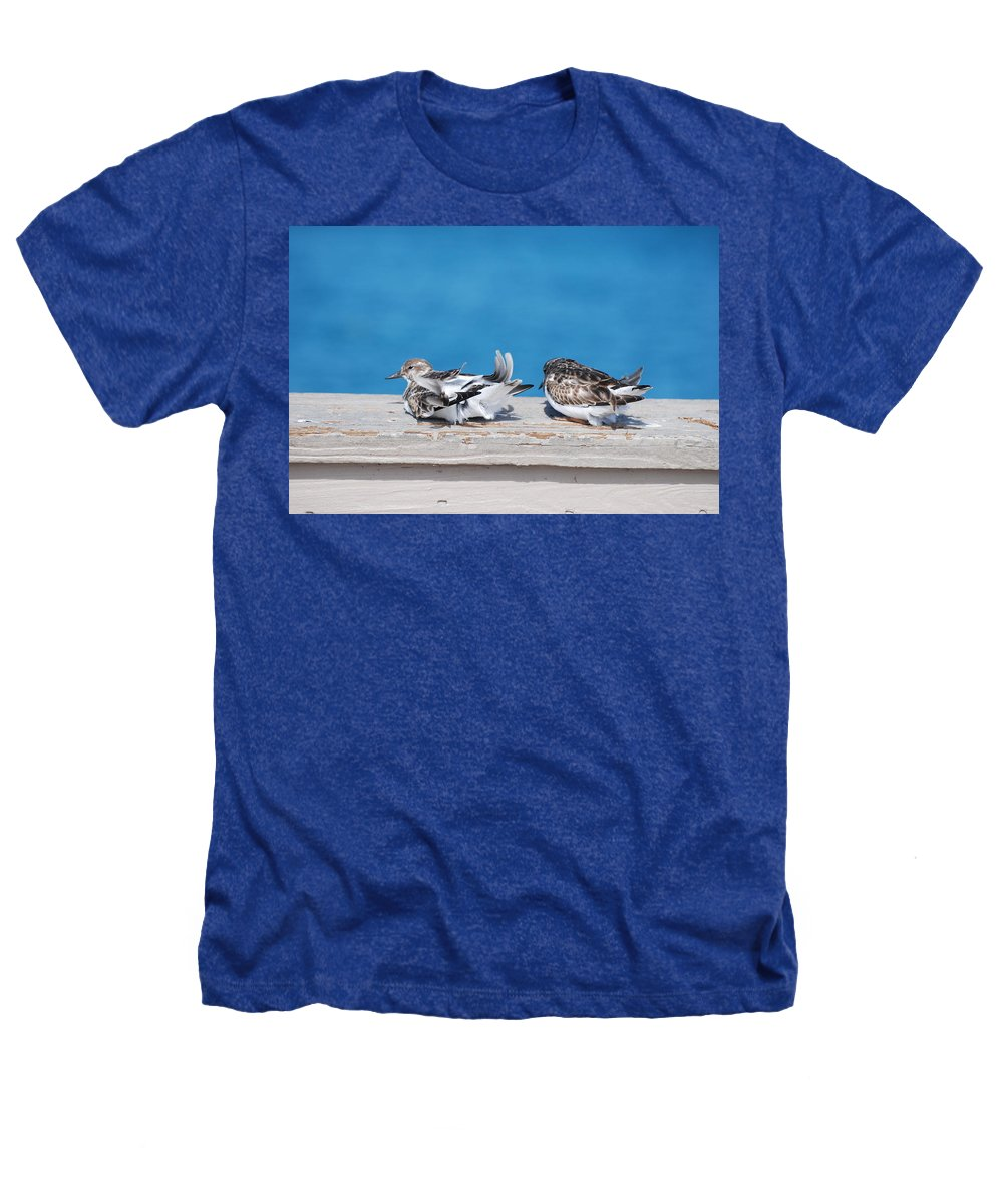 Bird Heathers T-Shirt featuring the photograph Cold Birds by Rob Hans