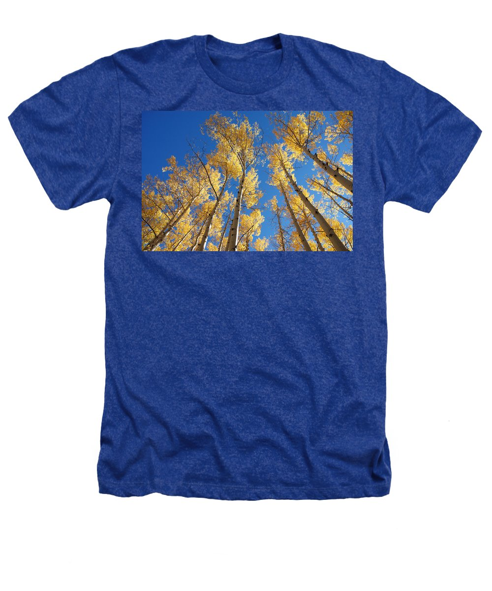 Aspen Heathers T-Shirt featuring the photograph Colorado Aspen by Jerry McElroy