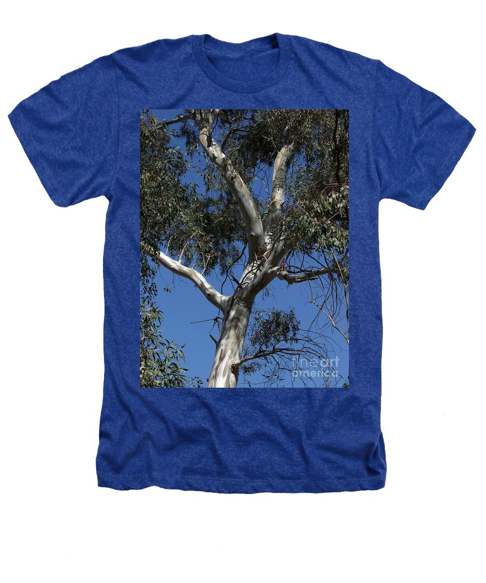 Trees Heathers T-Shirt featuring the photograph Eucalyptus by Kathy McClure