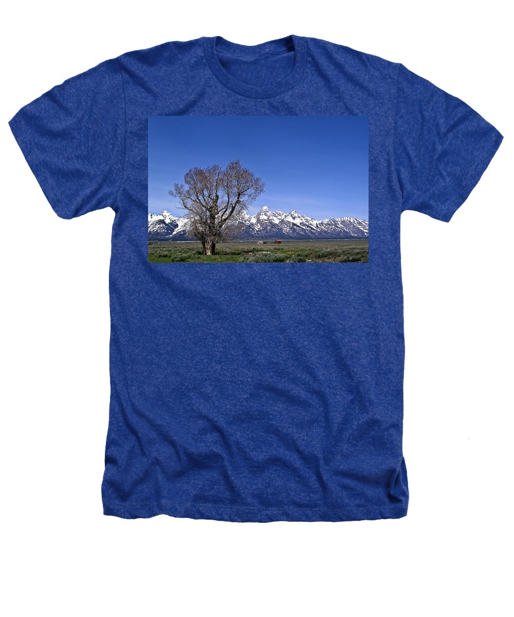 Tree Heathers T-Shirt featuring the photograph Lone Tree At Tetons by Douglas Barnett