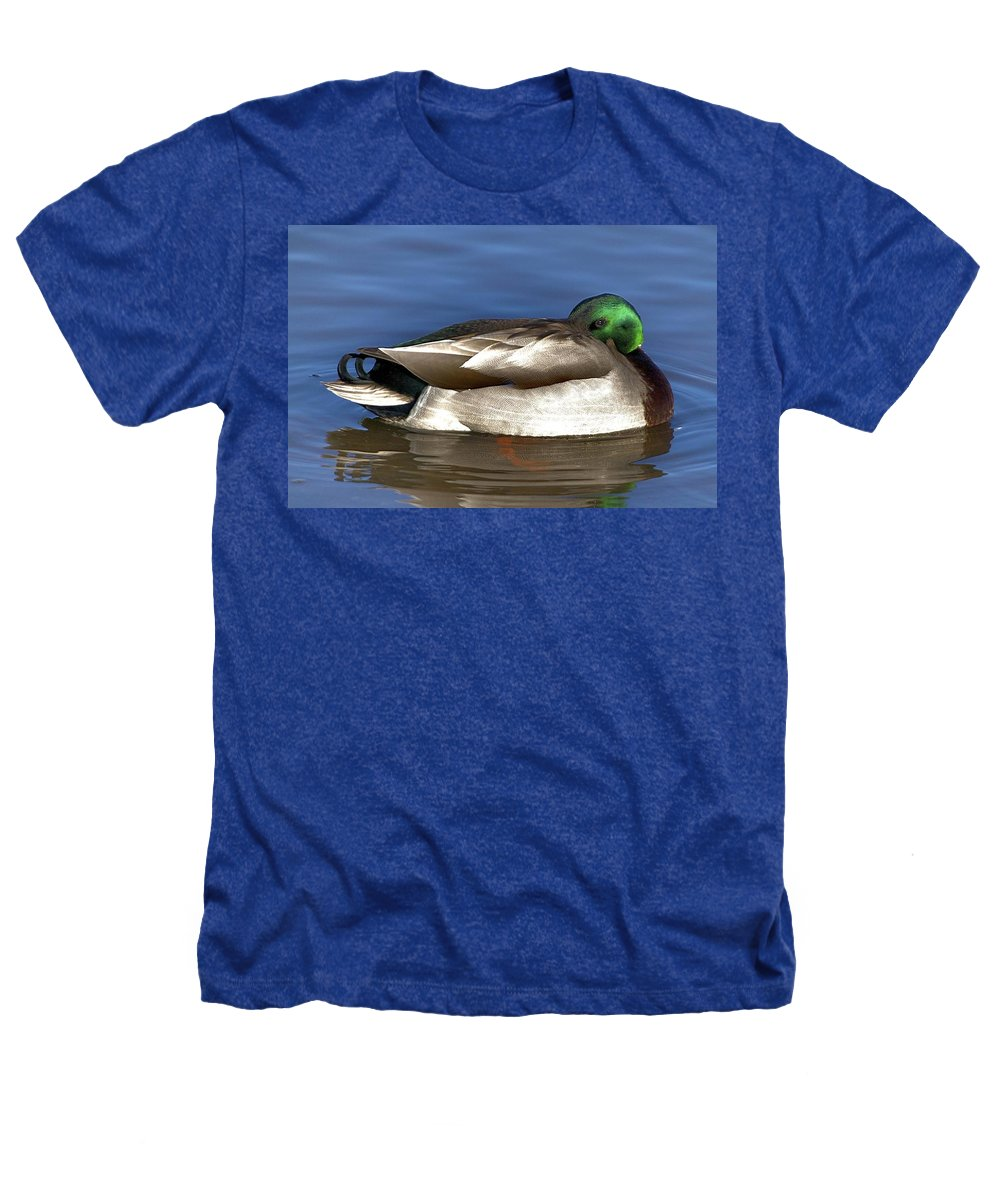 Duck Heathers T-Shirt featuring the photograph Peek A Boo by Robert Pearson