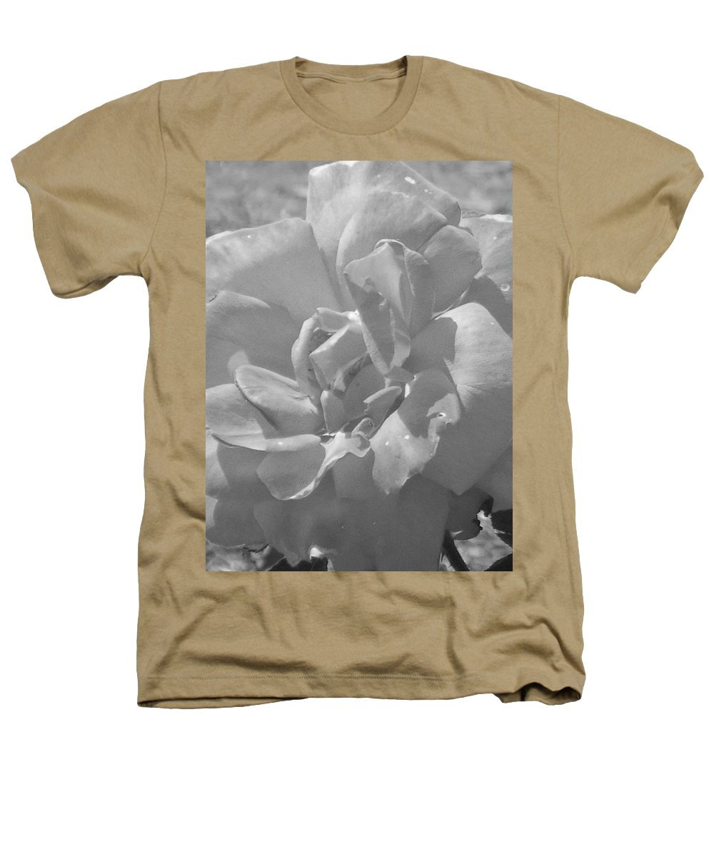 Rose Heathers T-Shirt featuring the photograph Dew Rose by Pharris Art