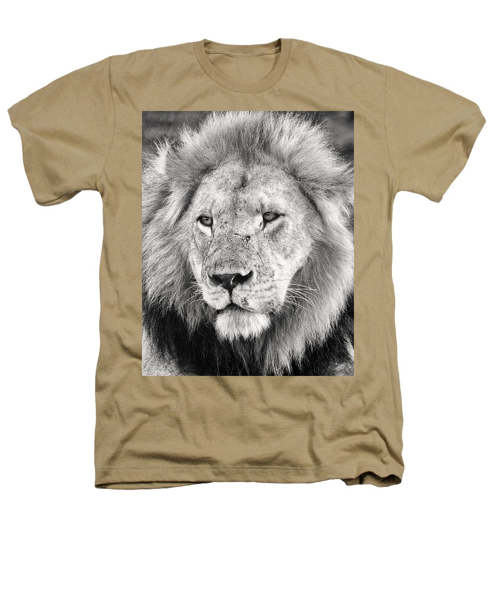 3scape Photos Heathers T-Shirt featuring the photograph Lion King by Adam Romanowicz