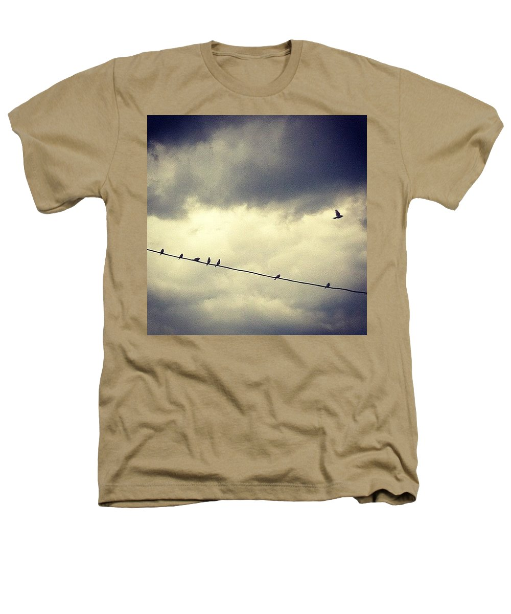 Heathers T-Shirt featuring the photograph Da Birds by Katie Cupcakes