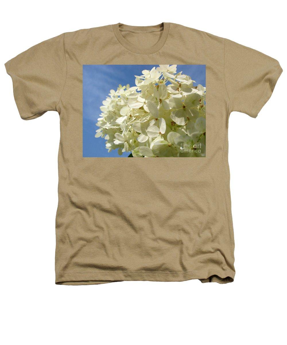 Hydranga Heathers T-Shirt featuring the photograph Hydrangea by Amanda Barcon