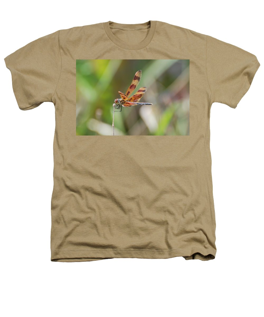 Nature Heathers T-Shirt featuring the photograph Dragon Fly by Rob Hans