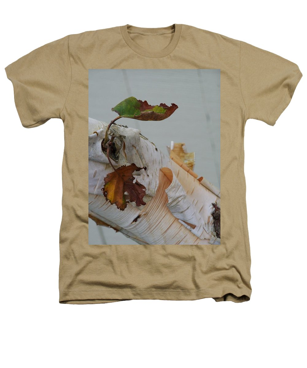 Birch Heathers T-Shirt featuring the photograph A Touch Of Fall by Gale Cochran-Smith