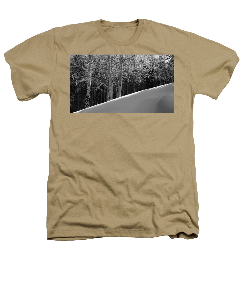 Colorado Heathers T-Shirt featuring the photograph Aspencade by Skip Hunt